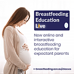 Interactive Online Breastfeeding Education for Expectant Parents