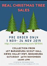 Xmas Tree Sales to Support Local Scouts